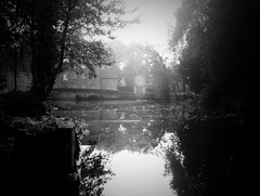 Morning on the Millpond (singinghedgehog) Tags: 365the2018edition 3652018 day289365 16oct18 project365 mono monochrome thetford river reflection reflect water mill