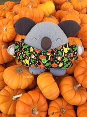 Pumpkins (tiramisu_addict) Tags: kawaii fallseason autumn tanakafarms pumpkins riceballpets onigiripetto madebyme handmade plush toys susuten norikoala