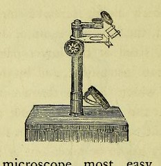 This image is taken from Page 70 of Hints on the formation of local museums (Medical Heritage Library, Inc.) Tags: museums science wellcomelibrary ukmhl medicalheritagelibrary europeanlibraries date1863 idb21782842