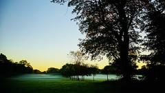 The Time of the Season. (elam2010) Tags: dawn sunrise autumn autumnal misty mist golfcourse trees shadows silhouettes landscape sonya7ii zeiss zeisssonnar arrowecountrypark wirral bluesky
