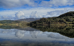 Llyn Dinas - Reflection (petersrockypics) Tags: llyndinas snowdonia lake landscape clouds reflection reflections bluesky northwales nikon nikond5200 nature