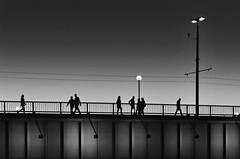 grey hour (heinzkren) Tags: schwarzweis blackandwhite bw sw monochrome urban candid people personen silhouette bridge brücke linz austria nibelungenbrücke railing geländer street streetphotography bluehour lights lamps evening sky