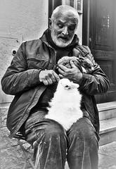 B&W (sladkij11) Tags: uomo coniglio rabbit streetphotography oldpeople anziano olympus penf mani hands