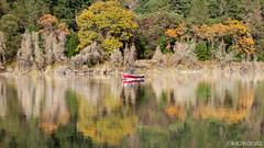 Fall Run (Nick Kanta) Tags: autumn boat color d90 fishing flyfishing nikon oregon outdoorphotography reflection river rocks rogueriver tamron1750 trees water