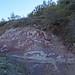 Paleosuelo laterítico ferruginoso en areniscas de facies Utrillas (Cretácico Sup.) - Las Majadas (Cuenca, España) - 03