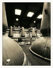 Auchroisk distillery still room (maltklaus) Tags: canoneos1v ef1740l ilfordhp5 xtol11 moerscheco moerschmt3 moerschselenium auchroisk distillery stills whisky scotland blackandwhite darkroomprint darkroom