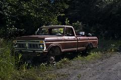 Abandoned Truck (Curtis Gregory Perry) Tags: revillagigedo island alaska ketchikan ford truck pickup abandoned old 1973 1974 1975 1976 junk gravel road nikon d810