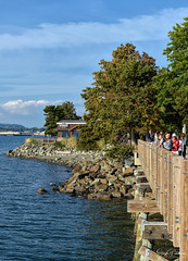 Boulevard Park - Fairhaven Historic District (SonjaPetersonPh♡tography) Tags: bellingham cityofbellingham bellinghambay fairhaven fairhavenhistoricdistrict historicfairhavendistrict nikon nikond5300 washington washingtonstate stateofwashington trail waterfront water ocean pacificocean boulevardpark boulevardpier waterfronttrail overwaterboardwalk pier waterscape beach scenic scenery boating harbor fishing landscape outdoors park