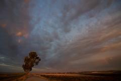 Storm and Rainbow (José Rambaud) Tags: guadalquivir rio river sunset atardecer nubes clouds cloudscape cloudy sunlight cloudsstormssunsetssunrises storm stormy tormenta cielo sky skyscape rain otoño autumn trebujena cádiz andalucía