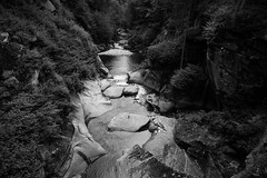 Stream through the Woods (RichardJames1990) Tags: steam water river brook burn running through woods forest mountains rocks splash fall froth movement black white monotone cliffs slowly relaxing calm serene symmetrical road centred middle perspective lincoln flume gorge us roadtrip new hampshire newhampshire england permigewasset