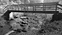 Causey Burn Wooden Footbridge (Gilli8888) Tags: countydurham stanley bridge causeyburn tanfield gibside blackandwhite woodenbridge footbridge burn rocks water linear northeast cameraphone samsung s7