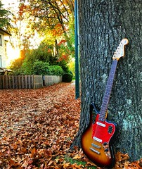 Time to Rake (Pennan_Brae) Tags: musicphotography bass bassist fenderbass bassguitar guitars guitar changeofseasons leaves autumn fenderjaguar fender fenderguitars fenderguitar electricguitar
