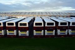 676, 663, 683, 628, 629, 633 & 64141 (Callum's Buses and Stuff) Tags: trident dennis transbus lothian lothianbuses edinburgh edinburghbus bus buses madderandwhite madderwhite madder mader busesedinburgh buseslothianbuses tridentdennis dennins plaxton sn51axu denis broomhouse