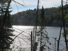 Lake of the Woods 6 (D. S. Hałas) Tags: halas hałas canada ontario sudburydistrict manitoulindistrict carlyletownship killarney killarneylakelandsandheadwatersprovincialpark lakeofthewoodstrail lakeofthewoods
