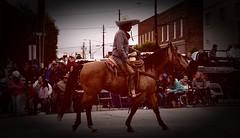 MULE DAYS PARADE, BENSON NC (Apartment 4 G Photography.....) Tags: benson nc bensonnc rayriveraphoto ray rivera parade
