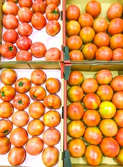 Tomatoes in cardboard boxes displayed for sale - Stock image (DigiPub) Tags: 1061133200 istock 283660749 2018 abundance agriculture backgrounds colorimage colors container food foodanddrink freshness fruit healthyeating japan largegroupofobjects market nopeople october organic photography rawfood ripe store takenonmobiledevice vegetable vegetarianfood vertical yokohama