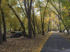 IMG_2816 (August Benjamin) Tags: provo provoriver provorivertrail fall utah mountains provocanyon fallcolors autumn trees leaves orem utahvalley jogging