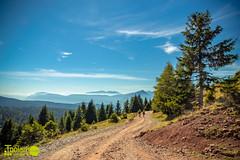 Meran 2000 (Toolaris Media) Tags: italien meran südtirol meran2000 berge panorama weg wanderweg bäume wald himmel
