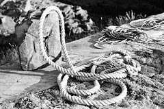 28 Still life, Kentra Bay, Argyll, Earra-Ghàidheal (I ♥ Minox) Tags: film 2018 olympusom2n om2n om2 olympusom2 olympus om2582 xp2 ilfordxp2 ilford scotland ardnamurchan argyll earraghàidheal kentra kentrabay stilllife