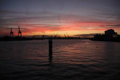 Hamburger Hafen 20.10.2018 (Elbmaedchen) Tags: hamburgerhafen hamburg elbe sonnenuntergang lichtstimmung sundown blauestunde kondensstreifen violett hafenkräne steinwerder docks