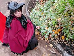 soft plants (SetsuntaMew) Tags: parenfaire renfaire faire festival pennsylvania pa fall autumn
