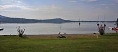 Lago de Viverone (Hugo von Schreck) Tags: hugovonschreck geese vessels viverone piemont italien tamron28300mmf3563divcpzda010