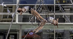 Duo suspended - suspended from a chandelier.. (gregoryscottclarke photography) Tags: sparksstreet duo suspended chandelier aerial balancing ottawa hang dangle swing two