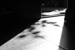 door of perception (Cosentino Aran) Tags: door light perception nature sun dark blackandwhite monocromatico shadow