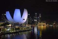 ArtScience Museum (Nicolay Abril) Tags: singapore singapura 新加坡 சிங்கப்பூர் singapur singapour सिंगापुर asia asien asie l'asie 아시아 เอเชีย អាស៊ី 亚洲 亞洲 アジア châuá sudesteasiático đôngnamá southeastasia asiatenggara asiedusudest sudestasiatique 东南亚 ஆசியா தென்கிழக்குஆசியா artsciencemuseum singaporeartsciencemuseum 新加坡艺术科学博物馆 marinabay nightphotography fotografíanocturna fotografiadinotte photographiedenuit noche nuit night 夜、夜の写真 夜間攝影 晚上 malamfotografi malam இரவுபுகைப்படம் இரவு reflejosenagua riflessiinacqua refletsdansleau waterreflections waterreflection wetreflection wetreflections lights citylights விளக்குகள் நகரம்விளக்குகள் lampu lampubandar 燈 城市的燈光 lumières lumièresdelaville luces lucesdelaciudad
