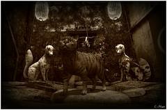 Spirits (Loegan Magic) Tags: secondlife tokyostreet cats japan alley blackandwhite