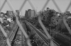 ikebukuro (N.sino) Tags: 沈ズミ leica m4 summicron5cm ikebukuro tokyoskytree rails train yamanoteline neopanacros100 film 池袋 線路 山手線 中池袋 スカイツリー フェンス