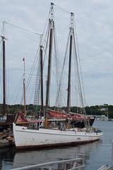 Temporary home (desert11sailor) Tags: sylvinawbeal schooner gloucester sailboat harbor haroldburnham