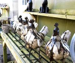Chickens in a row (Coedy453) Tags: chicken metal painted garden art craft bird farm yard