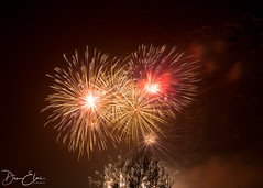 Castle Park Fireworks 2018 (Dan Elms Photography) Tags: fireworks display colchester essex pretty fire pyro pyrotechnics colours sky night colourful color danelms danelmsphotography wwwdanelmsphotouk