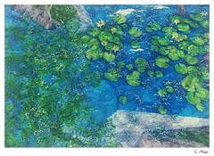 Elysion (Loegan Magic) Tags: secondlife elysion water lake waterlilies river rocks fall autumn landscape seascape