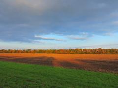 Вечерело в октябре / October evening (Владимир-61) Tags: небо облака осень октябрь поле cloud autumn october nikon coolpix p600