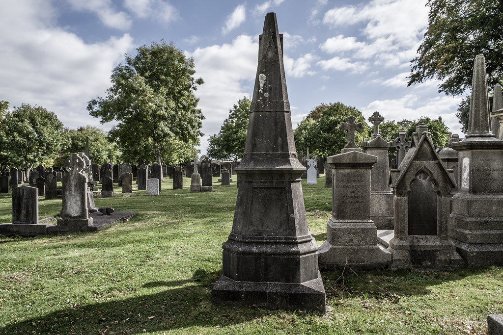 SEPTEMBER 2018 VISIT TO GLASNEVIN CEMETERY [ I USED A BATIS 25mm LENS AND I EXPERIMENTED WITH CAPTURE ONE]-144781