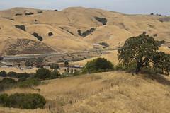 Z in Franklin Canyon (I) (imartin92) Tags: christie california bnsf railroad railway freight train locomotive ge generalelectric c449w dash9 es44ac gevo