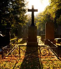 1 (derliebewolf) Tags: friedhöfe cemetery graveyard grave backlight sunrise decay lostplace abandoned light autumn fall hss