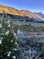 Cold today (quanuaua) Tags: ifttt 500px livigno alps alpine village mountain colors cold frohst