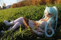 Sakura Lawinja (Aria Wings) Tags: evokedoll evoke doll bjd bjddoll balljointeddoll girl woman elf fairy vieruo fantasie phantasie sd silikon silicon silicondoll
