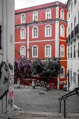 (Liane FKL) Tags: lisboa lisbonne portugal colors couleurs urban urbain ville city fasad façade stairs escaliers rue street red rouge window fenêtre