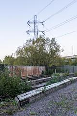 Guard pylon (d0mokun) Tags: blackcountry railway southstaffsline abandoned autumn bridge pylon sunset urbandecay urbanexploration urbanlandscape urbex westmidlands tipton england unitedkingdom gb