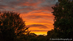 Dandenong Ranges, Victoria (Peter.Stokes) Tags: skyscenes sky australia australian nature landscape landscapes colour countryside colourphotography clouds light victoria