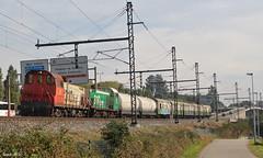 El tren de la desesperación (Iago G. V.) Tags: renfe sintra adif 310 serie 310022 310049 tractor maniobras mercancias especial eje atlantico galicia fontiñas