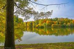 October in Tsaritsyno Park / Октябрь в Царицыно (Vladimir Zhdanov) Tags: autumn october landscape nature russia moscow tsaritsyno park forest tree sky water pond grass larch