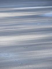Glacial (Titole) Tags: ice shadows shades monotone titole nicolefaton cold