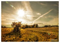 A Glorious Day to Be Alive (OATH Photography by Alison Richards) Tags: landscapephotography farmfields life nature beautifulskies creativephotography ruralbritain britishcountrysides artphotography englandunitedkingdom