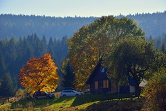 colours of the autumn (JoannaRB2009) Tags: sudety nowamorawa house building tree trees mountains hills forest light sunlight sunlit nature landscape view sunny lowersilesia dolnyśląsk polska poland autumn fall colours colors