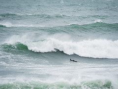 Surfer (Steve_Mallett) Tags: beach coastal cornwall em1markii england landscape photostevemallett polzeath seascape surfers waves wwwstevemallettphotos gbr